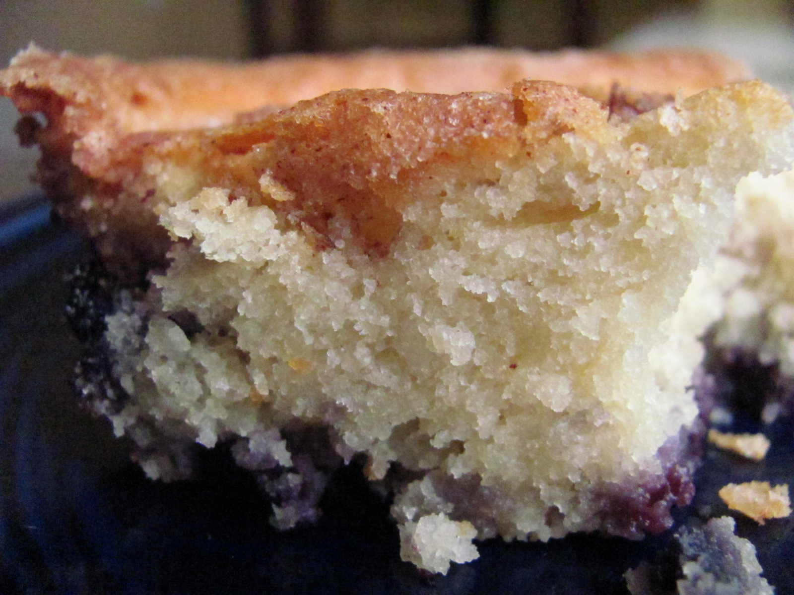 Really Good Blueberry Coffee Cake | Louanne's Kitchen